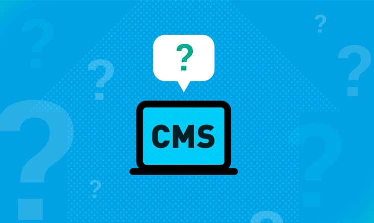 Best CMS for Website Development